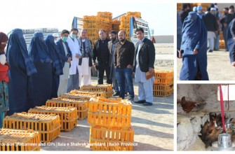 RETURNEES AND IDPS RECEIVE POULTRY TRAINING AND ENTERPRISE STARTUP KITS