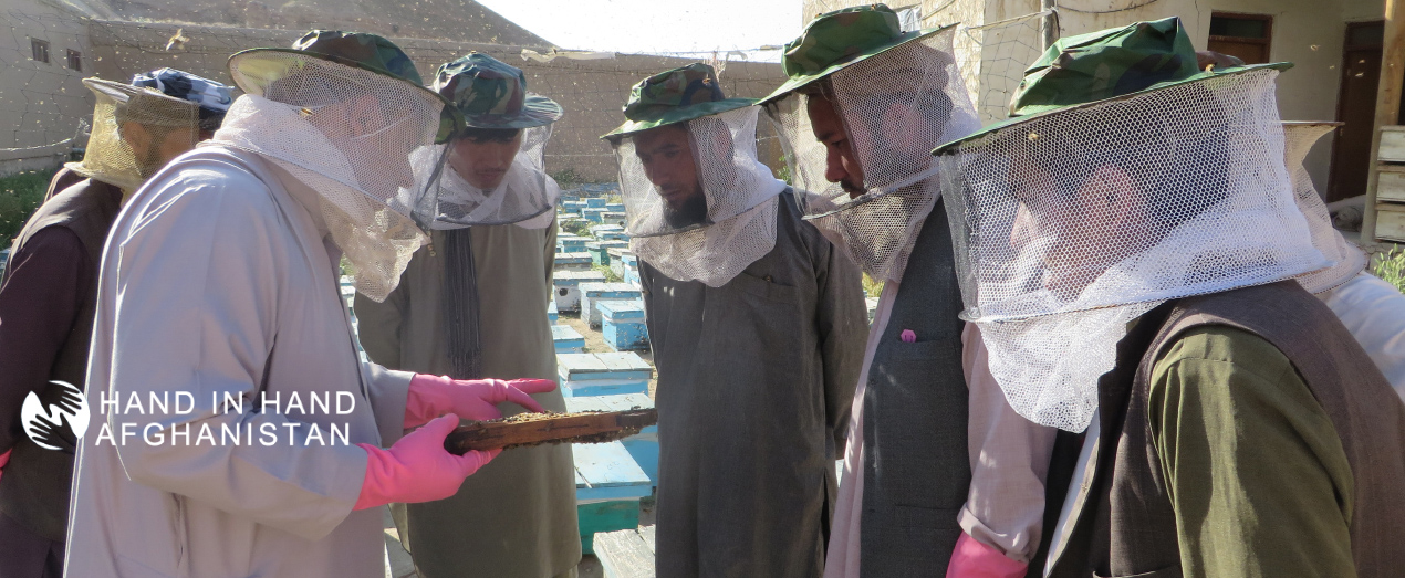 3.-Dara-i-suf-Payan-district-Beekeeping-Vocational-training-1